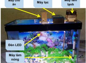 Đồ án thiết bị hỗ trợ nuôi cá tự động